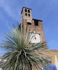 Tower Carrarese